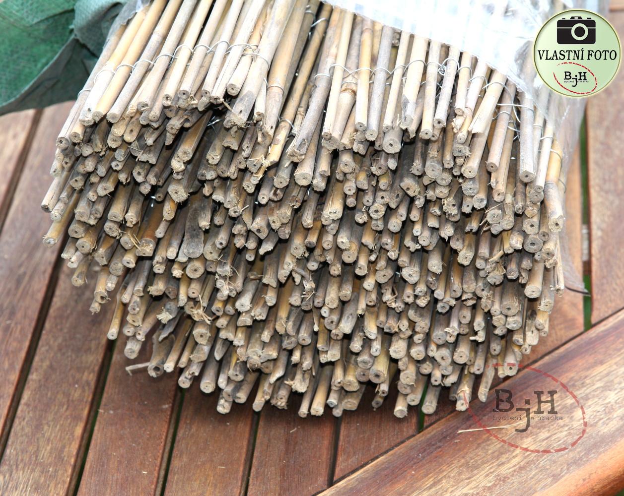 bambusov%C3%A1%20roho%C5%BE